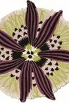 tappeto-moderno-missoni-botanica_02