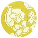 tappeto-rotondo-magnolia-yellow
