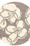tappeto-rotondo-magnolia-taupe